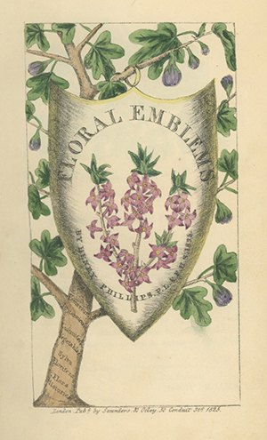 A Collection of more than 100 Language of Flowers titles published between 1655 and 1897, with one manuscript and one ephemeral item. LANGUAGE OF FLOWERS.